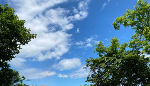 【札幌円山登山】幼児の登山デビューにおすすめ!気軽に登れて大人気!親子で登山しよう!